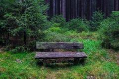Die alte Bank im Wald in Harz, Deutschland Stockfoto
