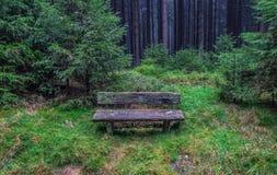 Die alte Bank im Wald in Harz, Deutschland Lizenzfreie Stockfotografie