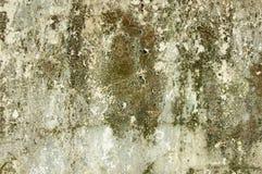 Die alte befleckte weiße Wand Stockbilder