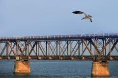Die alte Eisenbahn-Brücke Lizenzfreie Stockfotos