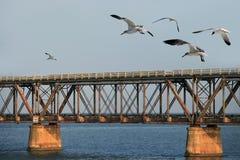 Die alte Eisenbahnbrücke Stockfoto