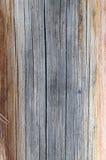 Die alte hölzerne Beschaffenheit mit natürlichen Mustern Innerhalb des Baumhintergrundes Alte grungy und verwitterte graue hölzer Lizenzfreie Stockfotografie