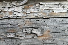 Die alte hölzerne Beschaffenheit mit natürlichen Mustern Innerhalb des Baumhintergrundes Alte grungy und verwitterte graue hölzer Stockfotos