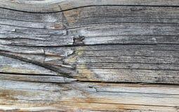 Die alte hölzerne Beschaffenheit mit natürlichen Mustern Innerhalb des Baumhintergrundes Alte grungy und verwitterte graue hölzer Lizenzfreie Stockbilder