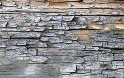 Die alte hölzerne Beschaffenheit mit natürlichen Mustern Innerhalb des Baumhintergrundes Alte grungy und verwitterte graue hölzer Lizenzfreie Stockfotos