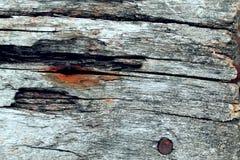 Die alte hölzerne Beschaffenheit mit natürlichen Mustern Innerhalb des Baumhintergrundes Alte grungy und verwitterte graue hölzer Lizenzfreies Stockbild
