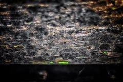 Die alte hölzerne Beschaffenheit mit natürlichen Mustern und Sprüngen auf dem sur Stockfoto