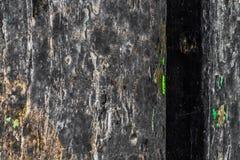 Die alte hölzerne Beschaffenheit mit natürlichen Mustern und Sprüngen auf der Oberfläche als Hintergrund Verdunkeln Sie sich von  Lizenzfreie Stockbilder