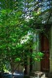 Die alte Hausbedeckung durch blühenden Busch Geschichte trifft sich heutzutage Stockfotos