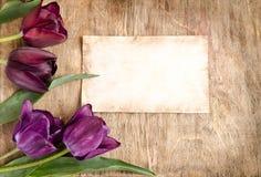 Die alte Karte und die frischen Tulpen von der Ecke Stockfoto