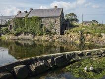 Die alte Mühle und das Wehr in Annalong Lizenzfreies Stockfoto