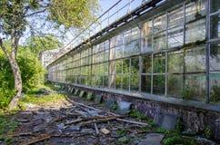 Die alte Orangerie Stockfotografie