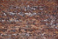 Die alte rote Backsteinmauer Stockbilder