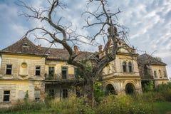 Die alte Ruine von Bisingen-Schloss nahe Stadt von Vrsac, Serbien lizenzfreies stockbild