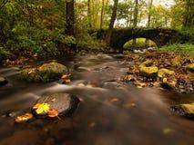 Die alte steinige Brücke über Strom Wasser des Baches voll der bunten Blätter, Blätter auf Kies, Blau unscharfes Wasser läuft Stockfotos