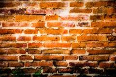 Die alte Wand Lizenzfreie Stockfotos