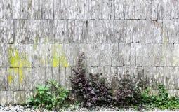 Die alte Wand des Hauses wurde von der Latte hergestellt stockfotografie
