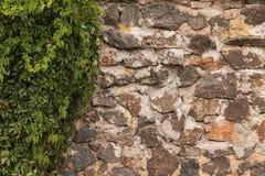 Die alte Wand, die vom Kopfstein und von den Trauben hergestellt wurde, beleuchtete durch die Sonne durch die Wolken Lizenzfreies Stockbild