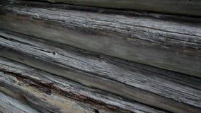 Die alten Klotz, die mit Blockhaus der Plageschädlinge dann ruiniert werden, stürzen möglicherweise ein stock video footage