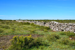 Die alten legen Steine in den Weg Stockfotos