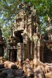 Die alten Ruinen eines historischen Khmertempels im Tempel compl Stockfotografie