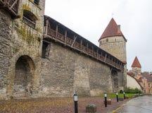 Die alten Stadtmauern von Tallinn lizenzfreies stockfoto