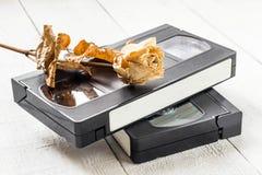 Die alten Videobänder und getrocknet stiegen Lizenzfreie Stockfotografie