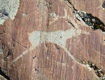 Die alten Zeichnungen auf Felsen Altai Lizenzfreie Stockfotografie