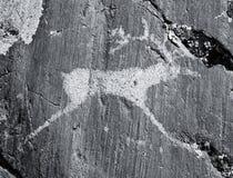 Die alten Zeichnungen auf Felsen Altai Stockfotografie