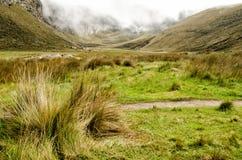 Die Anden in Ecuador Lizenzfreies Stockfoto