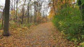Die Ankunft des Herbstes stockbild