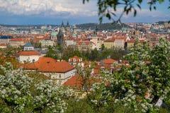 Die Ansicht über den Frühling Prag lizenzfreies stockfoto