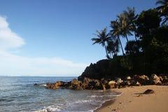 Die Ansicht über den Sandstrand mit Palmen und blauem Meer Lizenzfreies Stockfoto