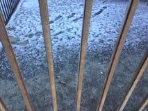 Die Ansicht der Abdrücke auf dem Schnee durch den Zaun Stockfoto
