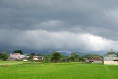 Die Ansicht des Reisfeldes im Dorf mit einem bewölkten Himmel, weil es regnet Stockbild