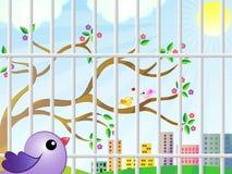 Die Ansicht des Vogels vom Käfig Stockbilder