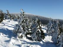 Die Ansicht des Winters von einer Spitze Stockfoto