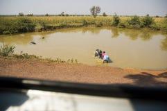 Die Ansicht vom Busfenster als indischen Frau, die im schmutzigen See des großen Stiers badet lizenzfreies stockbild