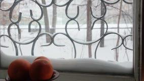 Die Ansicht vom Fenster auf Winteryard stock video footage