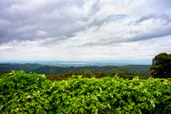 Die Ansicht von auf einem Berg Lizenzfreies Stockfoto