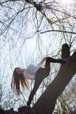 Die Ansicht von unten, die netten dünnen Mädchenturner bezaubert, ist auf ungewöhnlichen Baum ohne Blätter und führt Elemente des stockfotografie