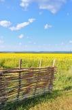 Die Ansicht wird vom Yard gesehen Lizenzfreie Stockfotografie