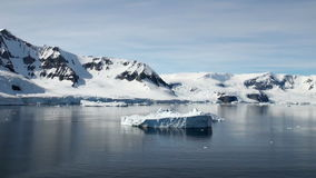 Die Antarktis stock video