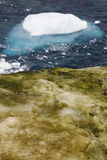 Die Antarktis-Landschaft Stockfoto