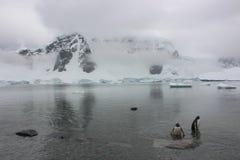 Die Antarktis - Landschaft Lizenzfreie Stockbilder