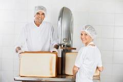 Die Anwendungsschneidemaschine des überzeugten Bäckers in der Bäckerei lizenzfreie stockfotos