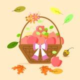 Die Apfelfrucht im Korb lizenzfreie abbildung
