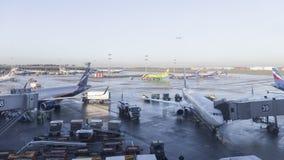 Die Arbeit ist im Sheremetyevo-Flughafen morgens, Moskau Stockfotografie