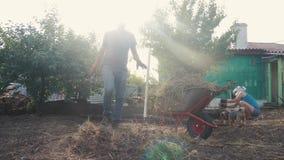 Die Arbeiters- und Frauengartenarbeit säubern das Gras Arbeitslebensstil in der Gartenlandwirtschaft Landwirt lädt Abfall und Gra stock video footage