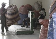 Die Arbeitskraft, die großen Sack voll der Koka holt, verlässt, bei Coca Leaves Depot in Chulumani belastet zu werden Lizenzfreie Stockfotografie